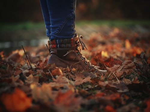 CAN YOU HEAR THE AUTUMN LEAVES UNDERNEATH YOUR FEET?
